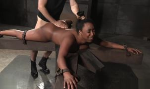 Dark-hued Bound Down and Pounded